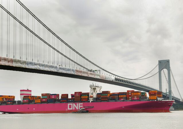 The ONE Hawk container ship passes under the Verrazzano Narrows Bridge to enter New York Harbour.