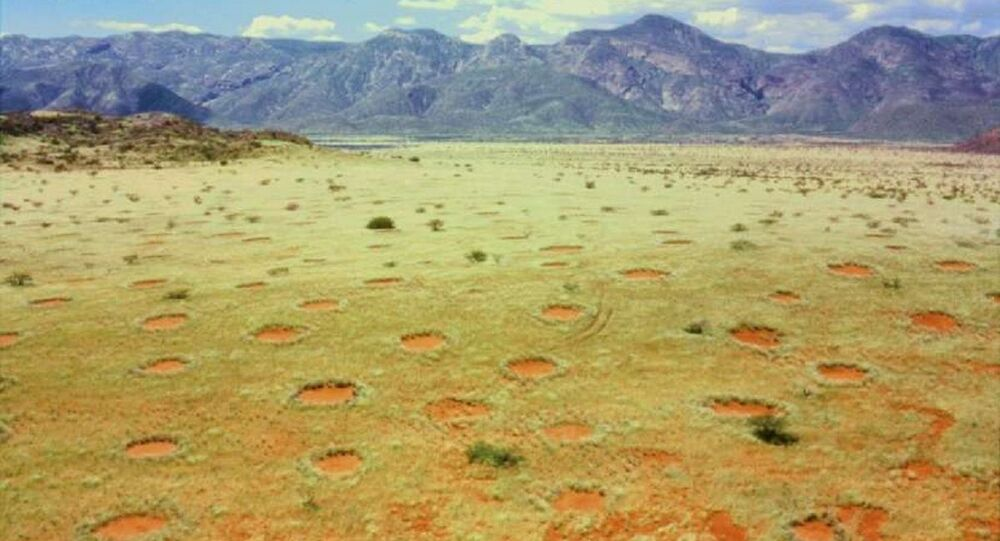 Fairy circles in Namibia's Marienfluss valley