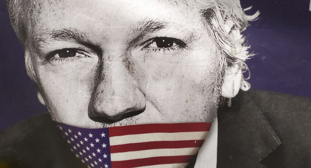 Assange with US flag covering his mouth outside Old Bailey on 29 September 2020.