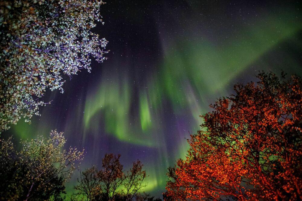 An aurora borealis in the Murmansk region, Russia
