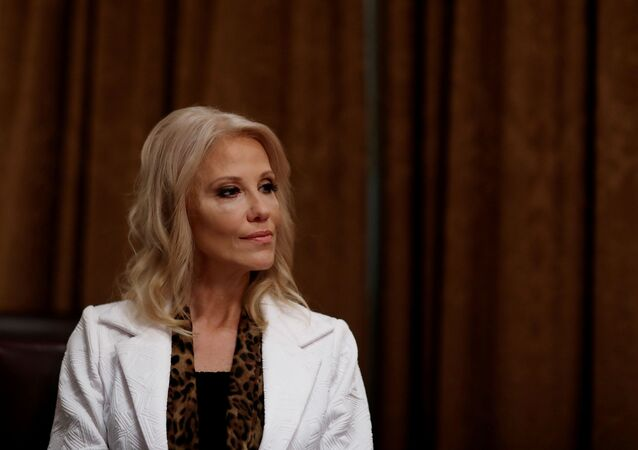 White House counselor Kellyanne Conway attends a roundtable discussion on America's seniors hosted by U.S. President Donald Trump in the Cabinet Room at the White House in Washington, U.S., June 15, 2020.