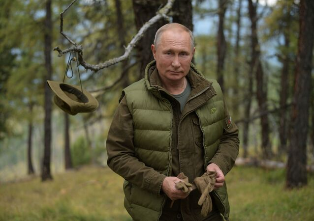 Russian President Vladimir Putin enjoys a walk during his leisure time in the Siberian Taiga area, Russia. 07.10.2019