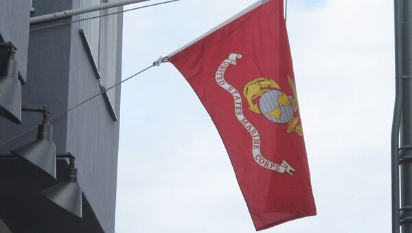 The flag of the United States Marine Corps (USMC) - Sputnik International