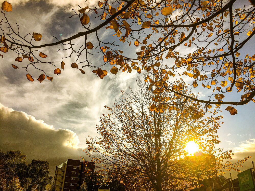 Autumn in Lichfield City, England
