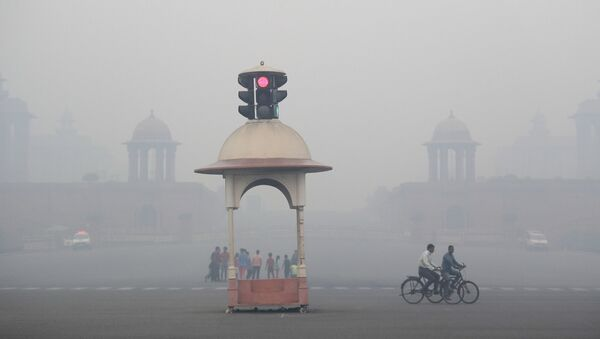 A cyclist pedals through the morning smog a day after the Diwali festival in New Delhi, India, Friday, 20 October 2017 - Sputnik International