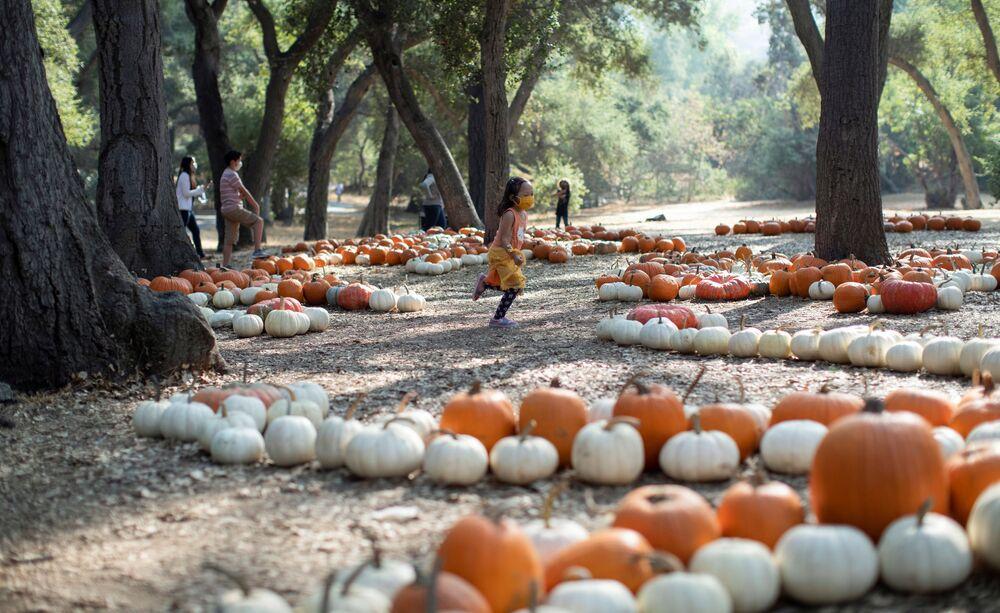 A girl runs through a pumpkin patch installation during the Halloween at Descanso event at Descanso Gardens in La Canada Flintridge, California, U.S., 9 October 2020.