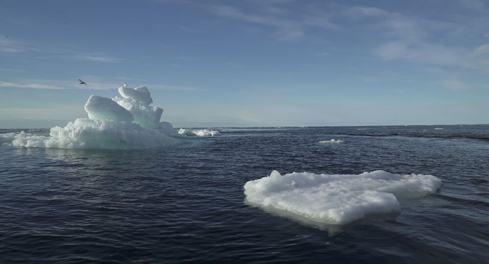 Floating ice is seen during the expedition of the The Greenpeace's Arctic Sunrise ship at the Arctic Ocean