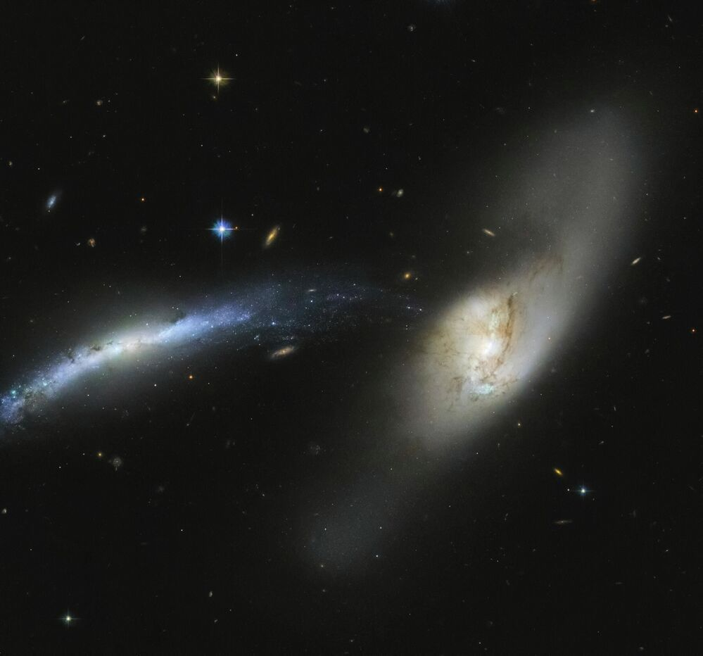 NGC 2798, a barred spiral galaxy in the constellation Lynx.