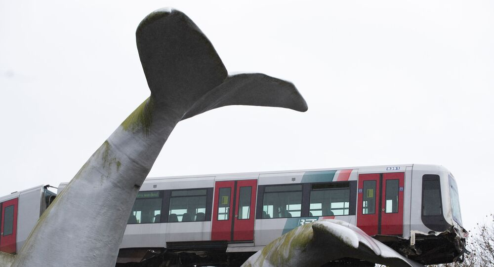 The whale's tail of a sculpture caught the front carriage of a metro train as it rammed through the end of an elevated section of rails with the driver escaping injuries in Spijkenisse, near Rotterdam, Netherlands, Monday, Nov. 2, 2020.
