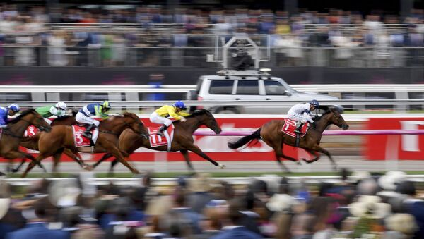 In this Nov. 7, 2017, file photo, horse race past the crowd during race 1 before the running of the Melbourne Cup at Flemington Racecourse in Melbourne. In Australia, where horse racing is arguably more popular than in any other country on the planet, the sport is continuing, minus the spectators, despite the nation's struggle to contain the new coronavirus.  - Sputnik International
