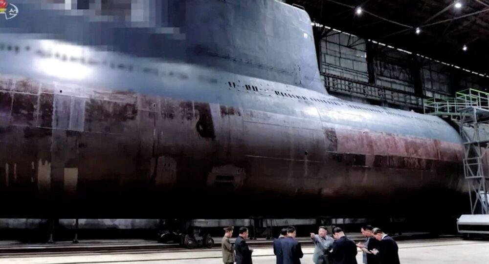 North Korean 'defector' crosses military buffer zone into South Korea
