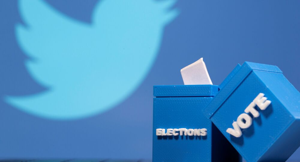 3D printed ballot boxes are seen in front of a displayed Twitter logo in this illustration taken November 4, 2020