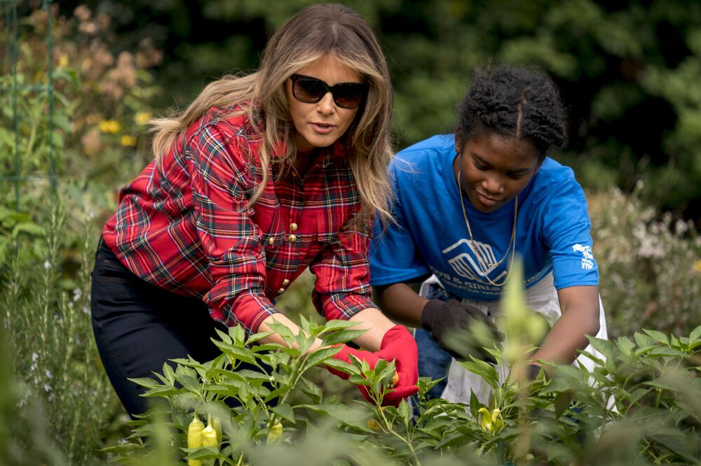 First lady Melania Trump picks peppers with a girl from the Boys and Girls Club of Washington in the White House Kitchen Garden on the South Lawn of the White House, Friday, 22 September 2017, in Washington.