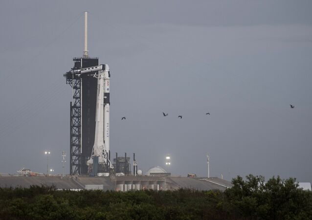 A SpaceX Falcon 9 rocket with the company's Crew Dragon spacecraft onboard is seen on the launch pad at Launch Complex 39A after being rolled out overnight as preparations continue for the Crew-1 mission, Tuesday, Nov. 10, 2020, at NASA's Kennedy Space Center in Florida