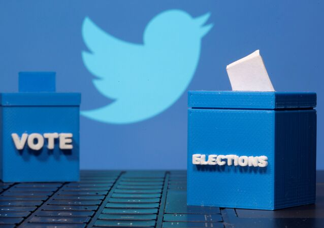 3D-printed ballot boxes are seen in front of a Twitter logo in this illustration taken 4 November 2020