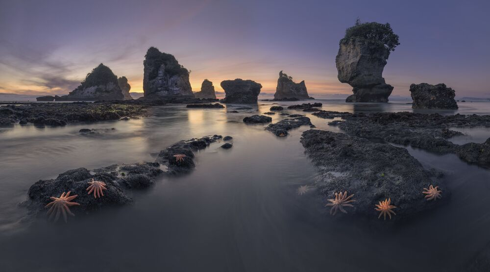 The photo Coast Of New Zealand by Russian photographer Sergey Aleshchenko, included in the TOP-101 of The International Landscape Photographer of the Year 2020.