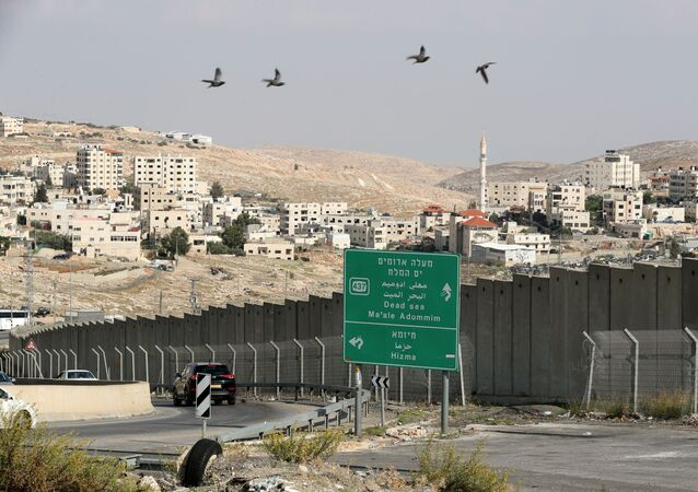 Birds fly as vehicles drive near the Hizma checkpoint in the Israeli-occupied West Bank, November 12, 2020.