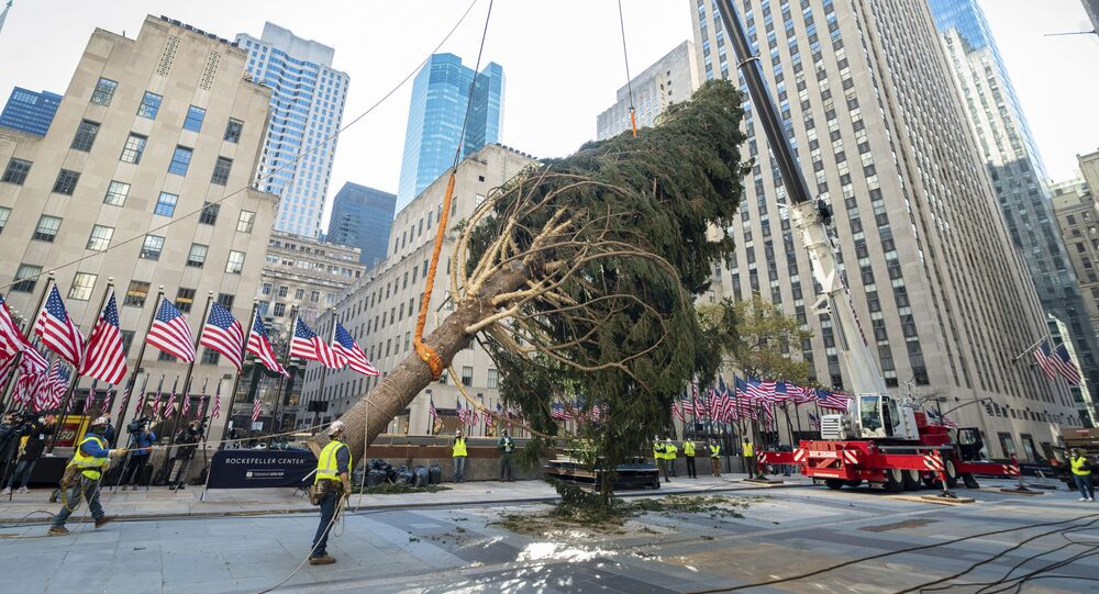 The 2020 Rockefeller Center Christmas tree, a 75-foot tall, 11-ton Norway Spruce from Oneonta, N.Y., is craned into place, Saturday, Nov. 14, 2020, in New York. The tree is presented to New York and the world by Tishman Speyer, the owners of Rockefeller Center.