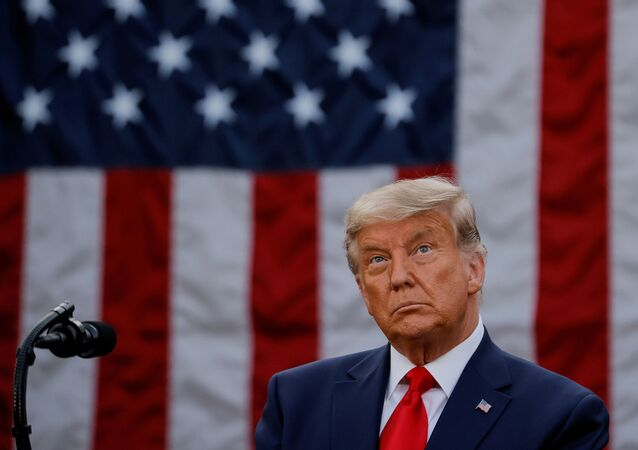 U.S. President Donald Trump delivers an address from the Rose Garden at the White House in Washington, U.S., November 13, 2020.