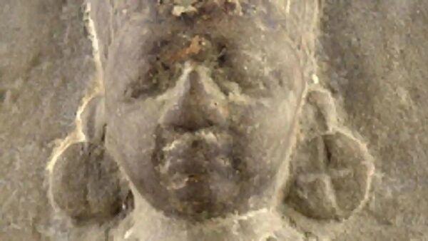 The stone statue of goddess Annapurna  - Sputnik International