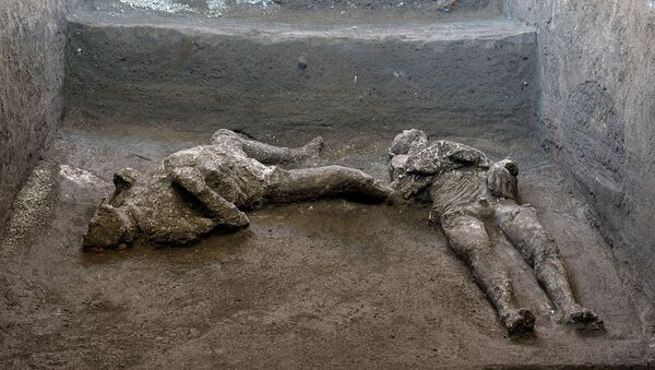Remains of two men who died in the volcanic eruption that destroyed the ancient Roman city of Pompeii in 79 AD are discovered in a dig carried out during the coronavirus disease (COVID-19) pandemic in Pompeii, Italy November 18, 2020.  - Sputnik International
