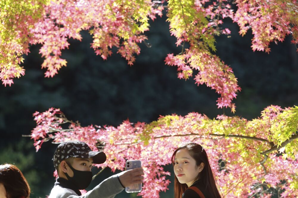 A visitor wearing a face mask to protect against the spread of the coronavirus takes a selfie with the colourful autumn leaves at a park in Tokyo, Monday, 23 Nov 2020.