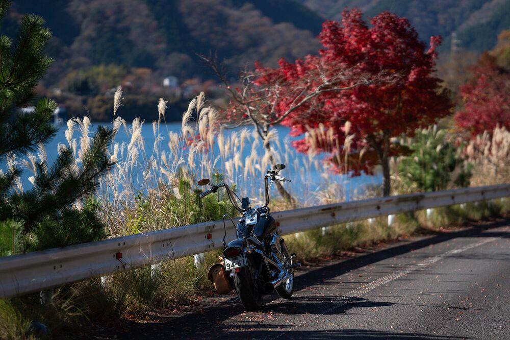 Lake Tanzawa in the Kanagawa prefecture in autumn.