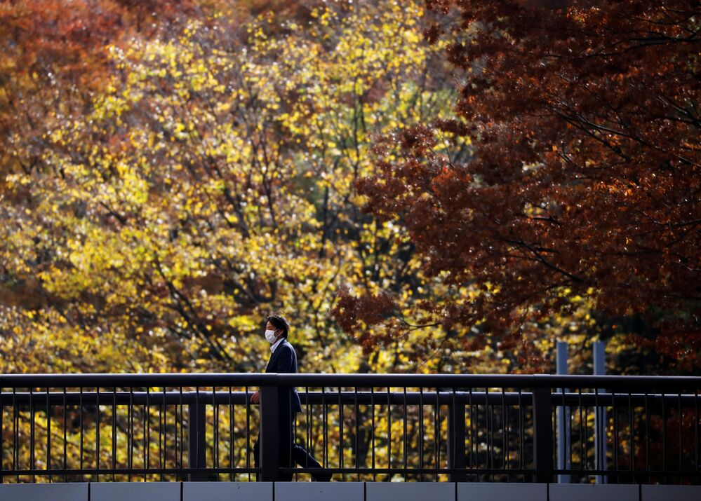 A man wearing a protective face mask walks under autumn coloured leaves, amid the coronavirus disease (COVID-19) outbreak, in Tokyo, Japan 19 November 2020.