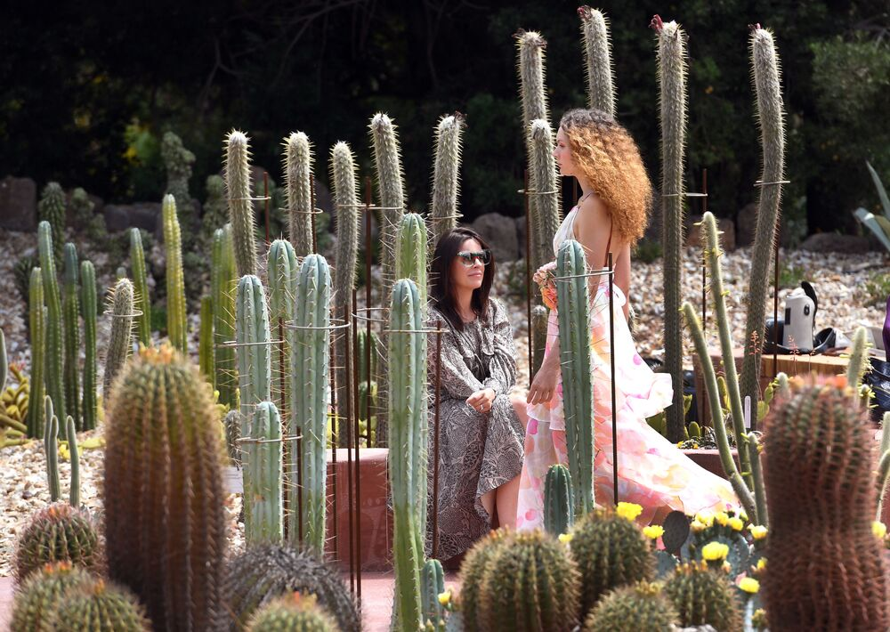 A model parades an outfit by Australian label Ginger & Smart in the Arid Garden at the Royal Botanic Gardens during Melbourne Fashion Week on 24 November 2020.