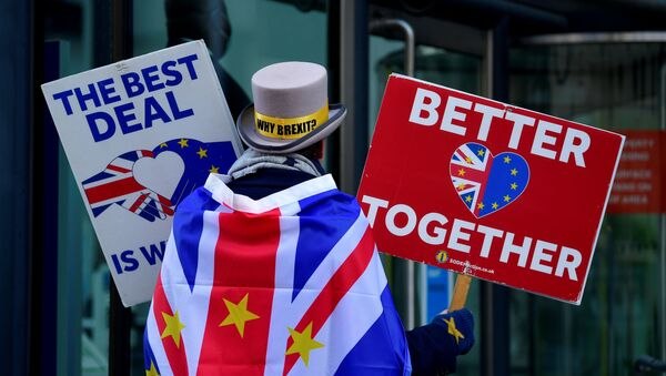 Anti-Brexit protester Steve Bray demonstrates outside of the conference centre where Brexit trade deal negotiations are taking place in London, Britain November 9, 2020 - Sputnik International