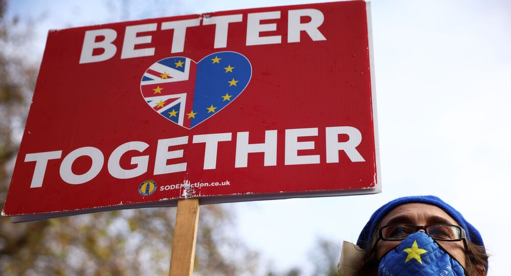 An anti-Brexit protester holds a sign as she demonstrates near the conference centre where Brexit trade negotiations are taking place, in Westminster, London, Britain, November 13, 2020