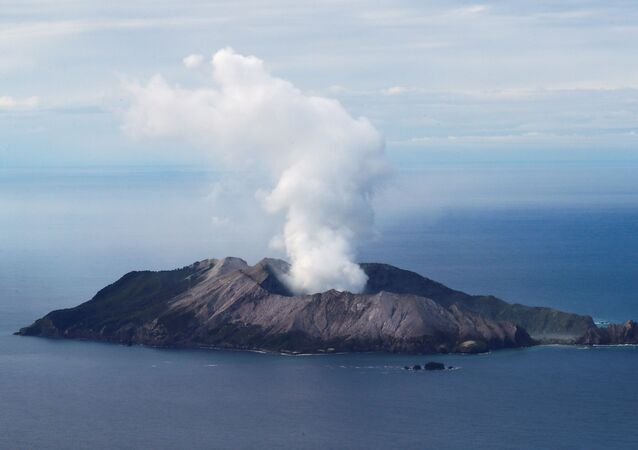 An aerial view of the Whakaari, also known as White Island volcano, in New Zealand, December 12, 2019
