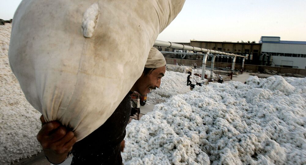 A worker carries a sack containing raw cotton in the city of Korla  in northwest China's Xinjiang Uygur Autonomous Region on Tuesday, Oct. 10, 2006