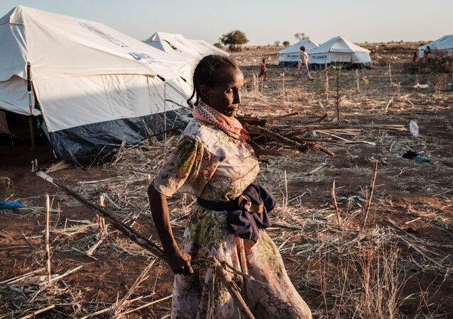 An Ethiopian refugee who fled Ethiopia's Tigray conflict carries collected branches at Um Raquba refugee camp in Gedaref, eastern Sudan, on December 7, 2020.