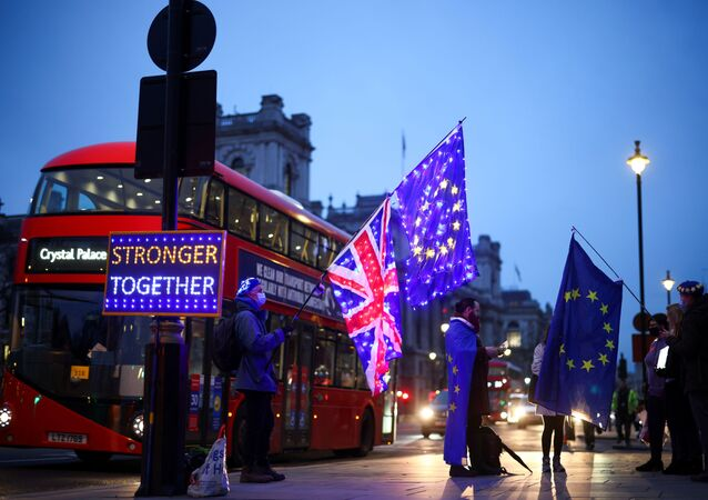 Anti-Brexit protesters demonstrate outside the Houses of Parliament in London, Britain December 9, 2020