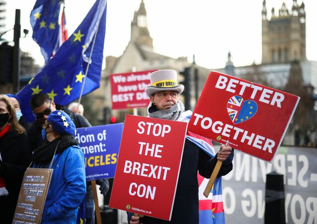 Steve Bray and others anti-Brexit protesters demonstrate outside the Houses of Parliament in London, Britain December 9, 2020