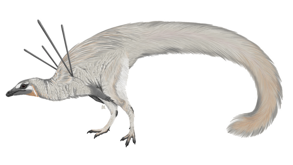 A life reconstruction of Ubiraja jubatus depicted by an artist - Sputnik International
