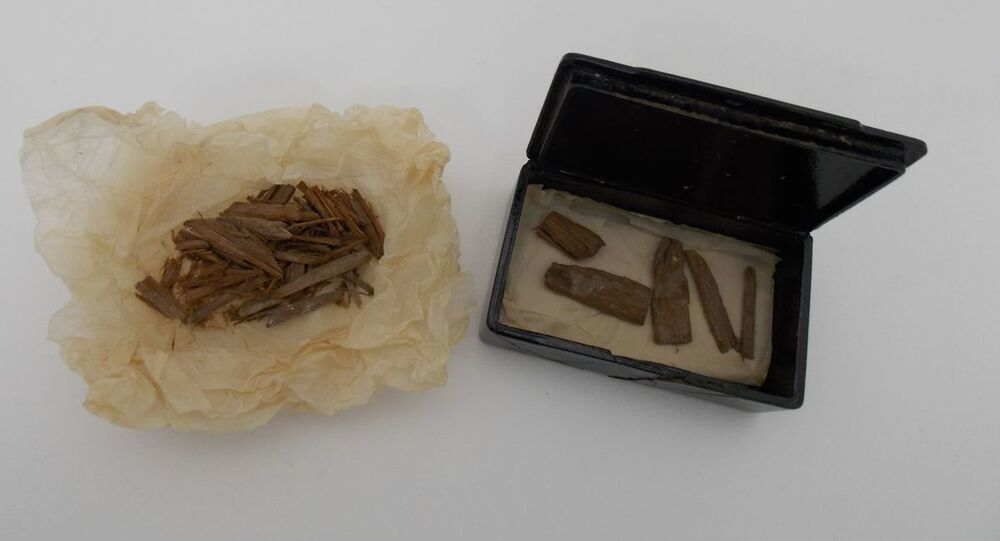 Fragments of cedar wood, recovered from inside the pyramid at Giza, that were discovered in a cigar tin at the University of Aberdeen