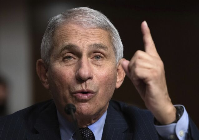 Dr. Anthony Fauci, Director of the National Institute of Allergy and Infectious Diseases at the National Institutes of Health, testifies during a Senate Senate Health, Education, Labor, and Pensions Committee Hearing on the federal government response to COVID-19 on Capitol Hill Wednesday, Sept. 23, 2020, in Washington