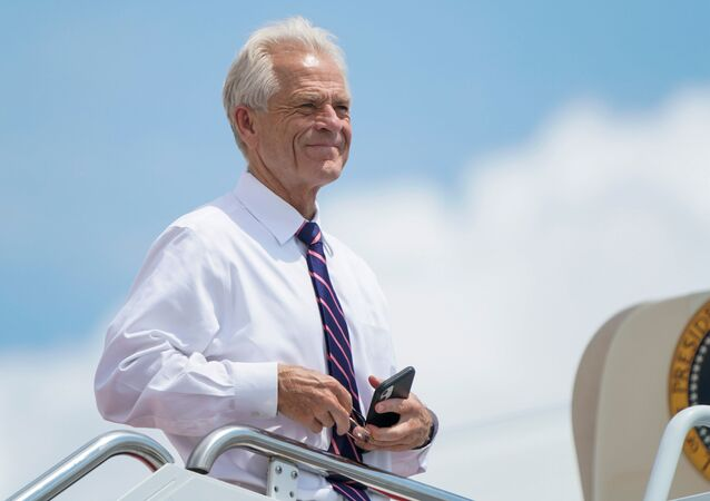 White House economic advisor Peter Navarro looks out from the steps of Air Force One as he waits to depart with U.S. President Donald Trump for travel to Ohio and New Jersey at Joint Base Andrews, Maryland, U.S., August 6, 2020