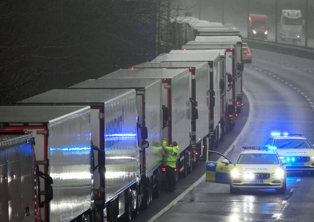 A police officer knocks on a cabin of one of lorries parked on the M20 motorway towards Eurotunnel and the Port of Dover, as EU countries impose a travel ban from the UK following the coronavirus disease (COVID-19) outbreak, in Folkestone, Britain, December 21, 2020.