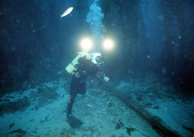 underwater cable