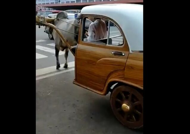 'Don't Think Elon Musk & Tesla Can Match It': Anand Mahindra's Post on Bullock Car Goes Viral