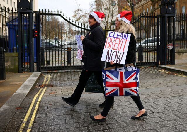 Pro-Brexit supporters carry placards as they walk in Westminster, London, Britain December 9, 2020