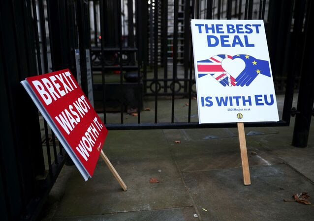 Anti-Brexit signs are pictured at the gates of Downing Street in London, Britain December 24, 2020