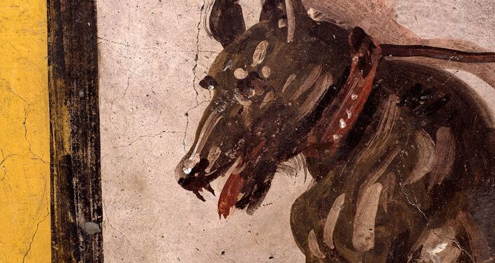 A fresco on an ancient counter depicting a dog on a leash that was uncovered during excavations in Pompeii, Italy, is seen in this handout picture released December 26, 2020.