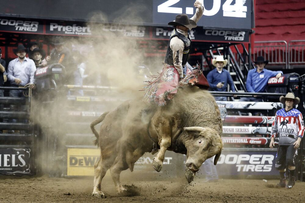 In a rodeo sport, the main task is to stay mounted while a bull goes wild and tries to buck a rider off. As for the US, to receive a score the rider must stay on the bull's back for eight seconds. One hand should hold on to a bull rope, while the other hand remains free. Touching the bull with the free hand is strictly prohibited and leads to a score of zero for the performance.   Above: Mason Lowe rides Cochise during a Professional Bull Riders event at the Sprint Centre in Kansas City, Mo. Lowe died Tuesday, 15 January 2019, after a bull stomped on his chest during a PBR chute-out competition at the National Western Stock Show in Denver.