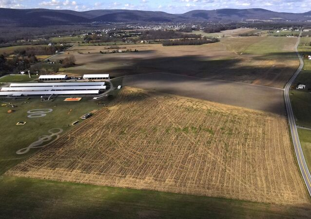 The remnants of a corn maze are seen at Winterbrook Farms after the corn was harvested, Tuesday, Nov. 10, 2020, in Thurmont, Md. This year's maze featured and honored Platoon 22, an organization serving veterans in the Maryland area.