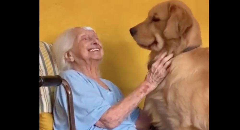grandma and golden retriever