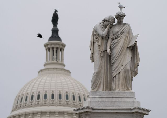Birds fly around the Peace Monument, Friday, Jan. 8, 2021, on Capitol Hill in Washington.